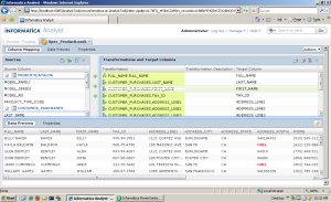 informatica ex-cell representation in each analytical steps